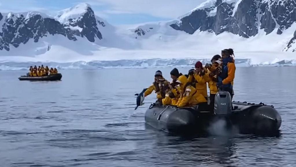 penguin escapes