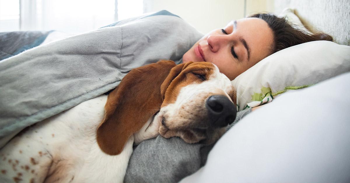 woman sleeping next to dog