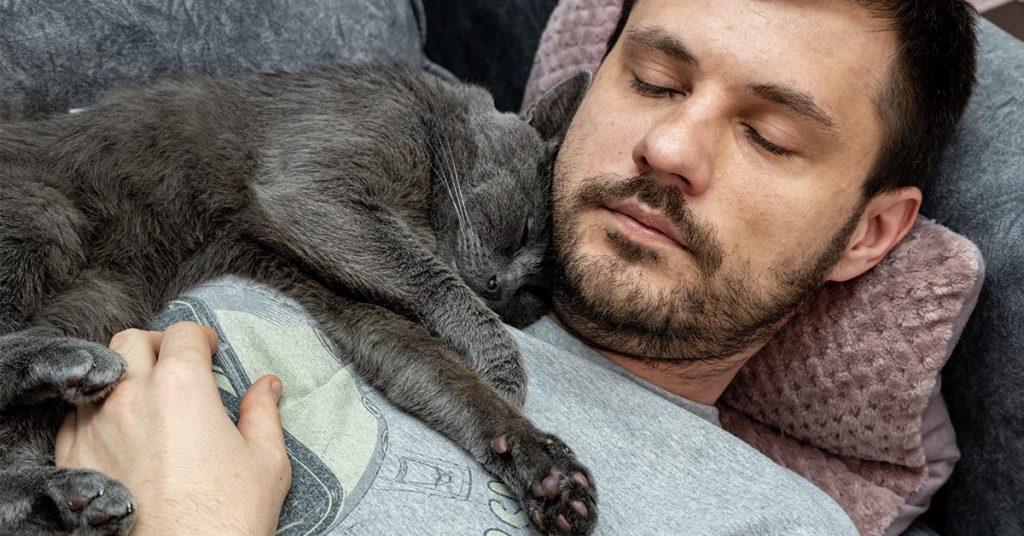 cat sleeping on man