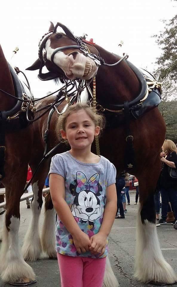 girl with horse photo bombed